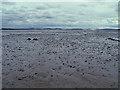 NT0680 : Mud near Blackness by Anne Burgess