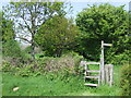 TQ3317 : Stile on the Sussex Border Path by Malc McDonald