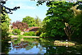 SU7341 : Pond by the church at Holybourne by David Martin