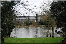 TL3808 : Dobb's Weir Pool by N Chadwick