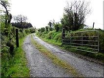 H3568 : Forest lane, Cornavarrow by Kenneth  Allen