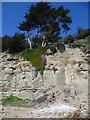 TQ8813 : Cliff fall at Cliff End, Fairlight by Marathon