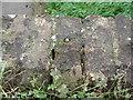 TA0003 : Rivet: Cadney, Bridge Lane by Brian Westlake