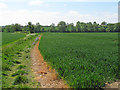 TL8825 : Footpath south  of Brookhouse Road, Great Tey by Roger Jones