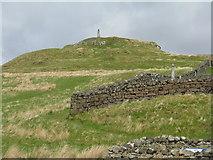 NG2547 : Duirinish Stone at Dunvegan by M J Richardson