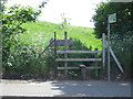 TQ4987 : Public footpath near Romford by Malc McDonald