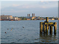 TQ3979 : Mooring post on the Thames by Stephen Craven