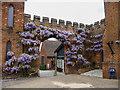 TL2308 : Wisteria Arch, Hatfield House, Hertfordshire by Christine Matthews