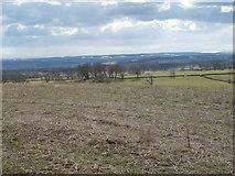 NZ0267 : Farmland west of Greenleighton by Mike Quinn