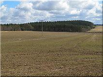 NZ0367 : Farmland on Carrs Fell and Shildonhill Plantation by Mike Quinn