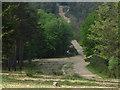 SU8864 : Swinley Forest track by Alan Hunt