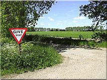 TM4592 : Stop sign at Lily Lane, Aldeby by Evelyn Simak