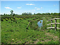 TM4592 : Drainage ditch in marsh pastures by Sutton's Farm by Evelyn Simak