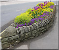 TA0389 : Canoe-shaped flower bed by Pauline E