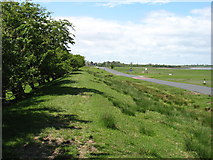 NY2759 : The Solway road nearing Drumburgh by David Purchase