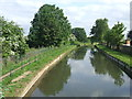 TL3809 : New River at Rye House near Hoddesdon by Malc McDonald