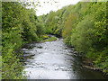 SJ9398 : River Tame, Dukinfield by David Dixon