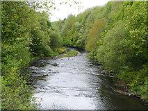 SJ9398 : River Tame, Dukinfield by David Dixon