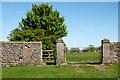 NZ0909 : Gates at entry to Barningham Park by Trevor Littlewood