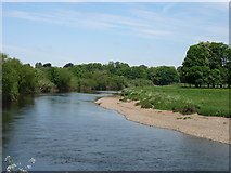 NY4056 : The River Eden approaching Carlisle by David Purchase