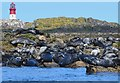 NU2338 : Grey seals, South Wamses by Jim Barton