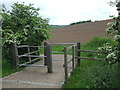 TL3904 : National Cycle Network route 1 near Lower Nazeing, Essex by Malc McDonald