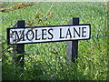 TM3686 : Moles Lane sign by Adrian Cable