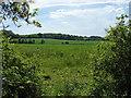 SU8974 : View from Hogoak Lane by Alan Hunt