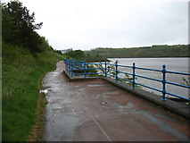NZ2963 : The Hadrian's Wall Path beside the River Tyne by David Purchase
