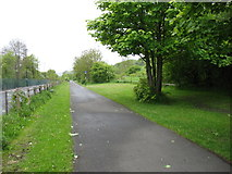 NZ1764 : The Hadrian's Wall Path beside the A6085 by David Purchase