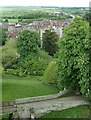 TQ0107 : Arundel Castle: View of grounds from keep by Rob Farrow