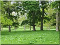 NU0411 : Elsington Park by Richard Webb