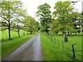 NU0411 : Road through Eslington Park by Richard Webb