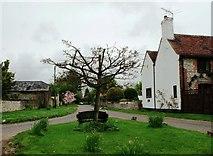 SU8700 : Manor Lane, South Mundham by nick macneill