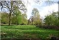 TQ6769 : Ashenbank Wood by N Chadwick
