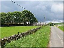 NT9911 : Road into Alnham by Richard Webb
