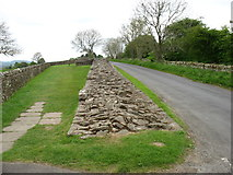 NY5764 : Hadrian's Wall at Turret 52A, east of Banks by David Purchase
