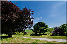 NX7763 : Urr Valley Hotel Gardens by Andy Farrington