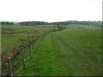 NY6065 : Hadrian's Wall Path heading for Comb Crag by David Purchase