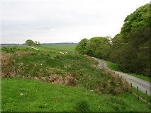 NY5965 : The track to Lanerton Farm by David Purchase