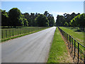 SE8575 : Minor road with metal railings by Pauline E