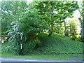 TF4410 : Rabbit Hill on Dowgate Road, Leverington by Richard Humphrey