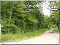 TM4583 : Footpath off Southwell Lane by Adrian Cable