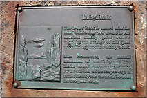 NJ1570 : Plaque on Daisy Rock by Anne Burgess