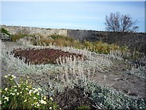 NU1341 : Walled Garden by DS Pugh