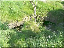 SE2525 : Ruins of Howley Hall, Cellar vault by Humphrey Bolton