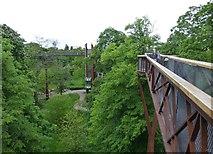 TQ1876 : Xstrata Treetop Walkway in Kew Gardens by Russel Wills