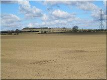 NZ0666 : Farmland between Bogle Burn and Hollywell Burn; and a pylon by Mike Quinn