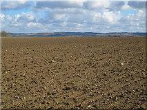 NZ0666 : Farmland north of Nafferton Farm by Mike Quinn