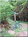 NO0049 : Path sign by Richard Webb